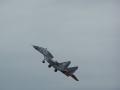 PolishAF_MiG_29